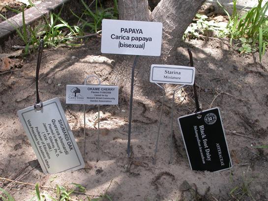 tree plaques plant id markers memorial tree tags aluma photo